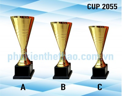CUP 2055